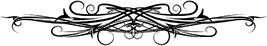 bnf express vertor symbol